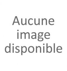 Bouchon + valve giant sup